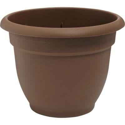 Bloem Ariana 6.5 In. H. x 6 In. Dia. Plastic Self Watering Chocolate Planter