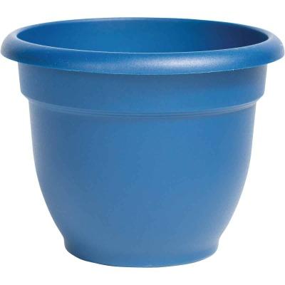 Bloem Ariana 8 In. Plastic Self Watering Classic Blue Planter